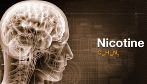 nicotine cognitive enhancement choline