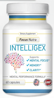 Intelligex Review