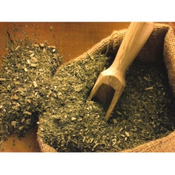 Yerba Mate Review